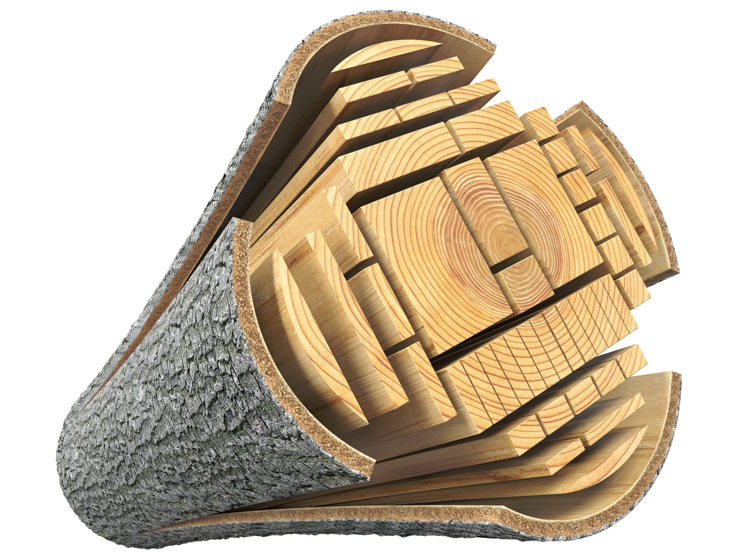 Cross-section of optimizing raw log into construction wood using laser based optimization