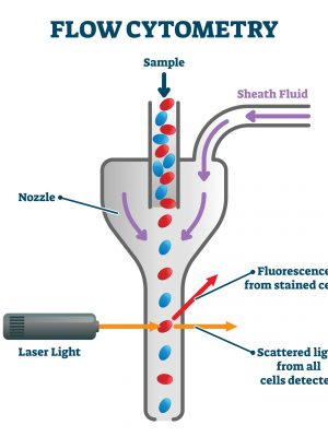 Application using Osela laser for Flurescence and Scatter application for Bioinstrumentation